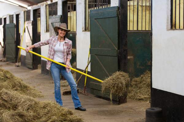 young female horse breeder working inside stable